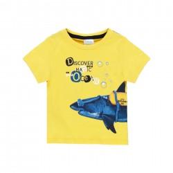 Camiseta punto Boboli tiburón