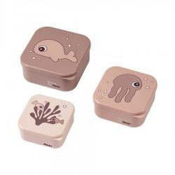 Snack Box Done By Deer Sea Friends