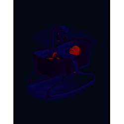Hamaca 3 en 1 Tiny Love Rocker Napper Denim